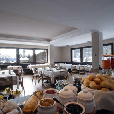 Hotel-Savoia-San-Martino-di-Castrozza (8)
