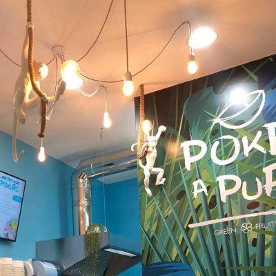 Poke-a-Pua (2)